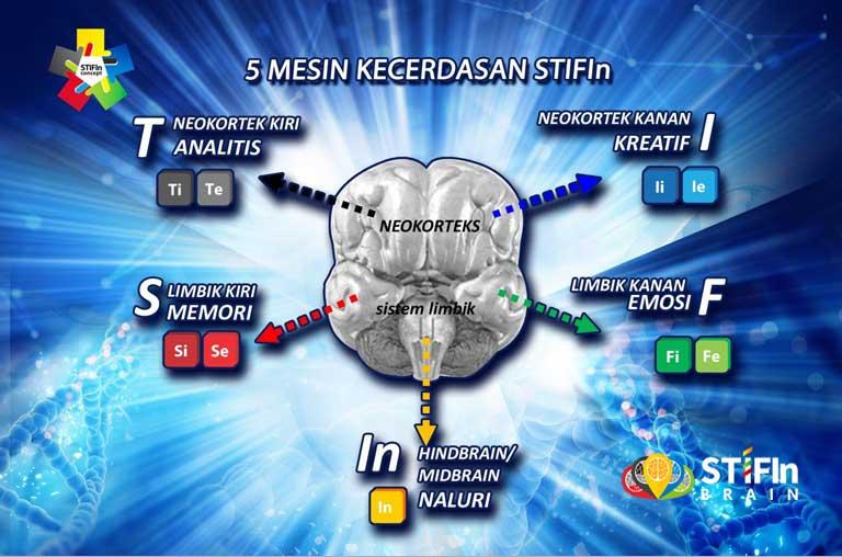 9 Personaliti Genetik STIFIn